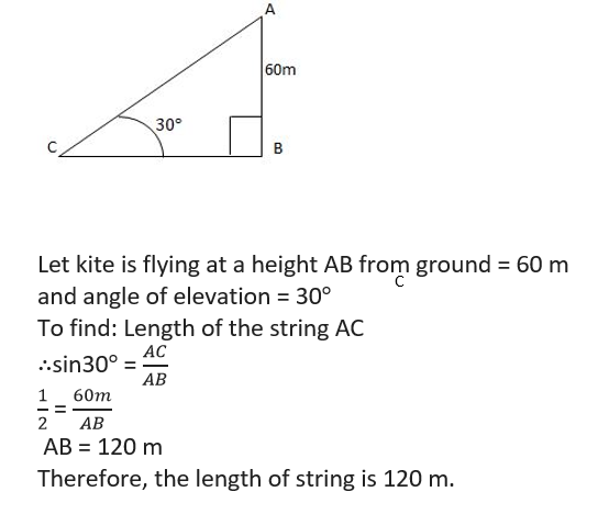Chapter - 9 Some Applications of Trigonometry MCQ Test - 1 | Math